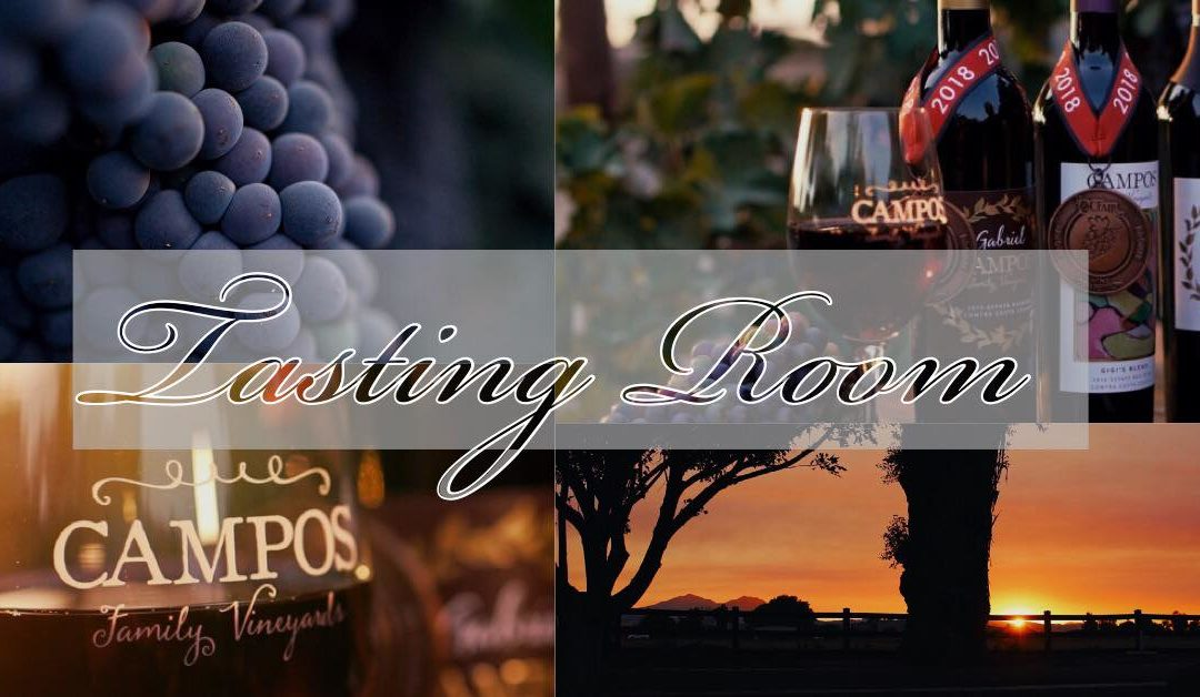 Never Been Wine Tasting? Tips for the Novice and the Tenured Taster